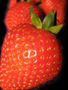 Strawberry_240x320